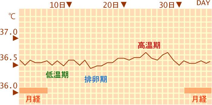 上がる 10 高温 体温 期 目 日